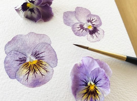 Watercolor Workshops: Citrus & Flowers