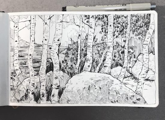 Landscape Drawing with Pen & Ink