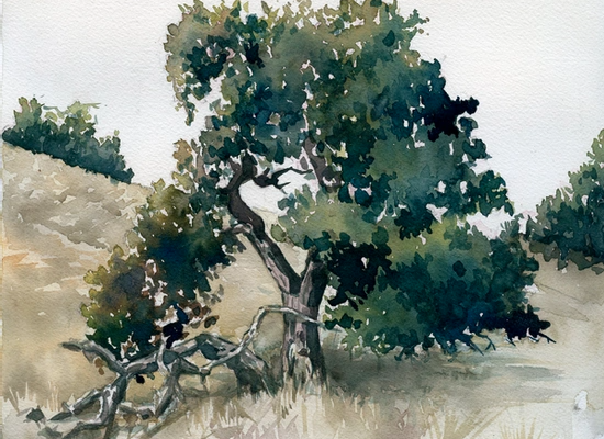 2-hour Drawing & Painting Workshops