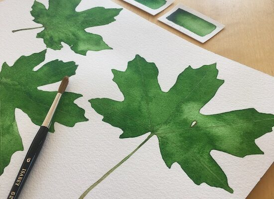 Watercolor Workshop: Leaves