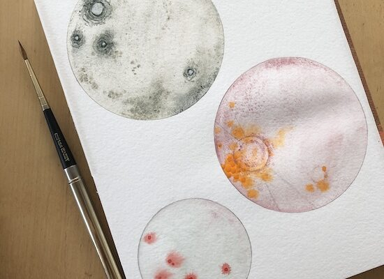 Watercolor Workshop: Petri Dish